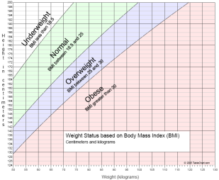 Body Mass Index (BMI) Method is Flawed measure of Health ...