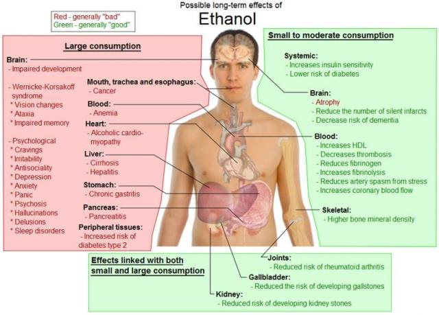 Long-term effects of alcohol consumption
