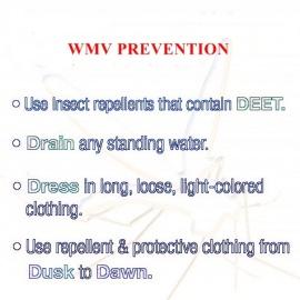 WMV Prevention
