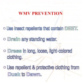 WMV Prevention