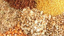 Ancient Grains